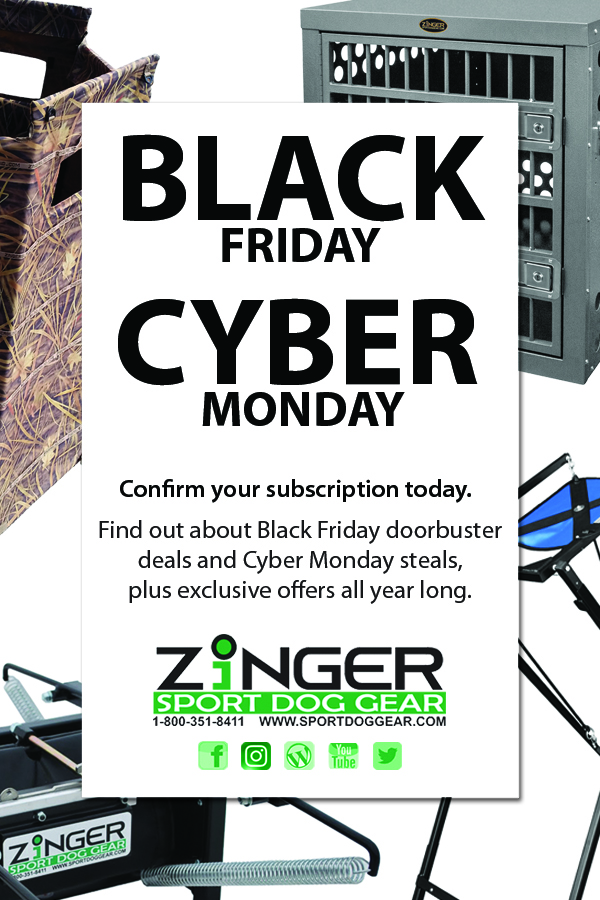 Black-Friday-Cyber-Monday-17-ad